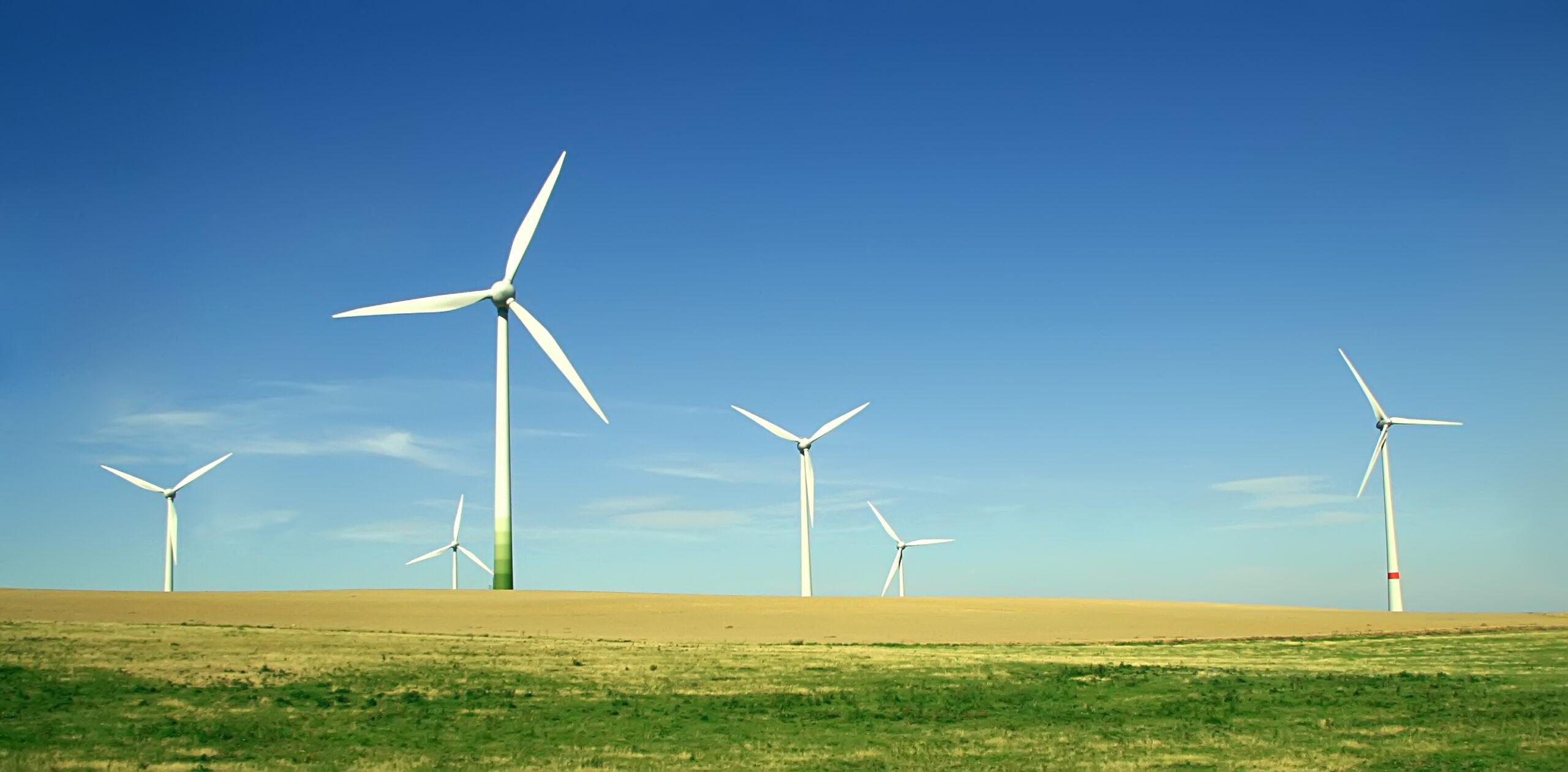 environment Environmental Responsibility